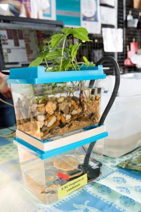 6 Collèges et Lycées d'Outre-Mer en finale  du 14e Concours scientifique CGénial mercredi 19 mai 2021
