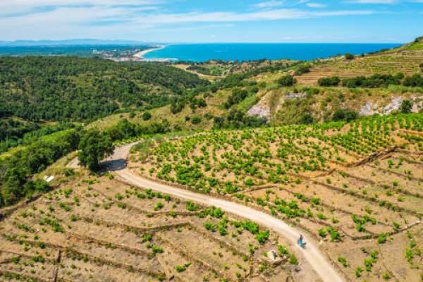 Cet été, on se met au vert à Argelès-sur-mer